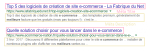 e-commerce-referencement-naturel-seo